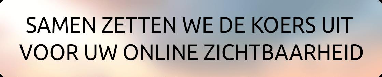 Samen zetten we de koers uit voor uw online zichtbaarheid